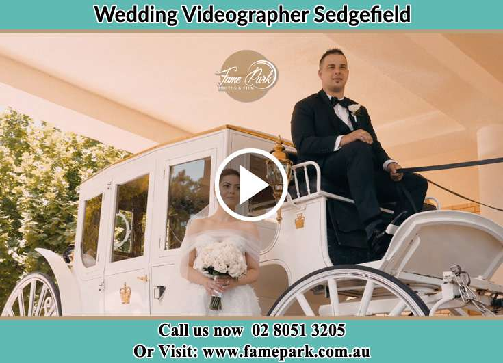 The Groom and the Bride pose for the camera in the wedding carriage Sedgefield NSW 2330