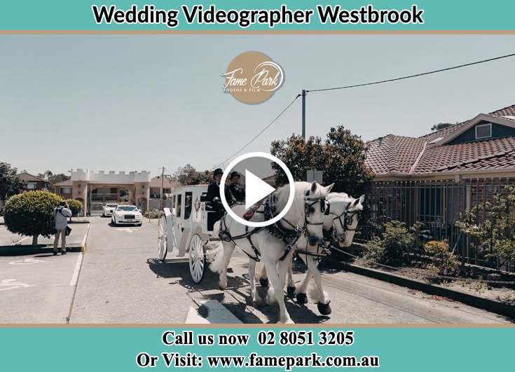 The wedding carriage Westbrook NSW 2330